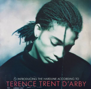 Terence Trent D'Arby - Introducing The Hardline According To... (LP) (EX/VG)
